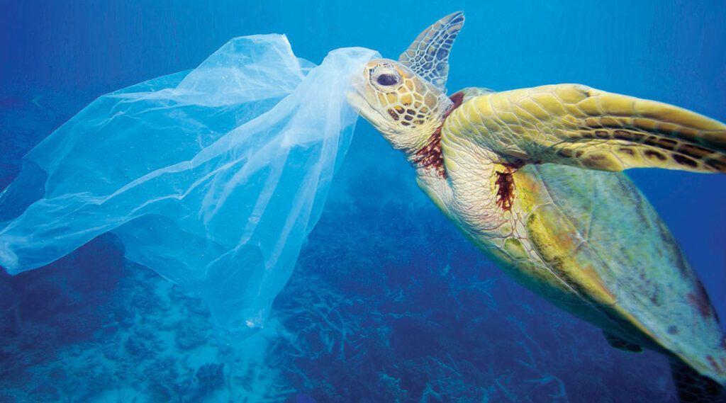 În Japonia s-a aprobat pentru prima dată interzicerea pungilor de plastic în magazine