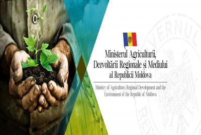 MADRM propune majorarea amenzilor pentru încălcarea legislației de protecție a mediului