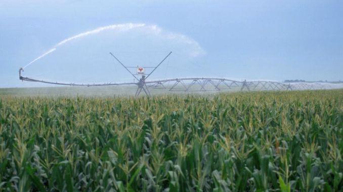 DECLARAȚIE/ 30 de ONG-uri atenționează asupra reluării presiunilor pentru utilizarea apei subterane pentru irigare