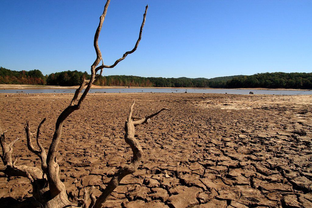 În viitor au fost prognozate  secete catastrofale globale