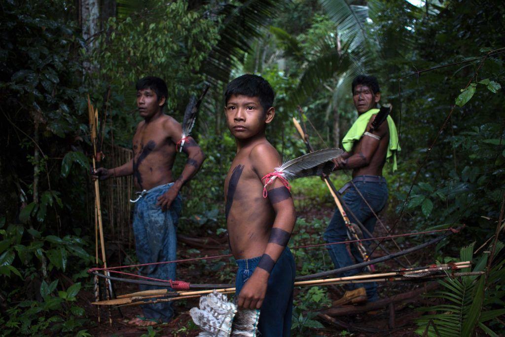 Pădurile din Amazon  sunt vândute ilegal pe Facebook